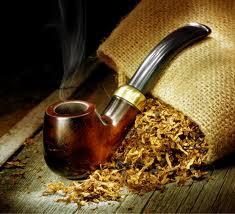 Табак убивает тлю.
