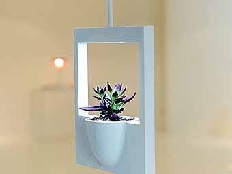 необычные подвесные горшки для комнатных цветов