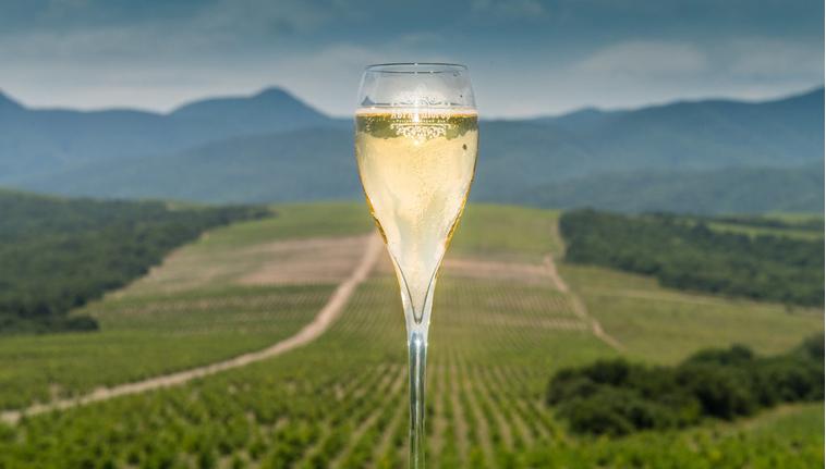 Александр Ткачев: высококачественные российские вина способны завоевать мировые рынки