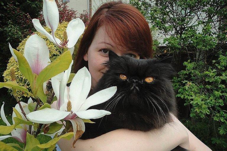 Дмитрий Смирнов: Кот Скрипаля как символ года
