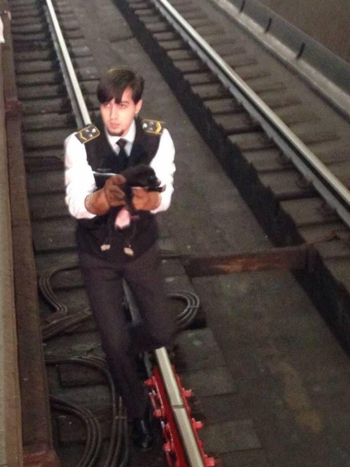 Машинист поезда спас щенка, упавшего на рельсы