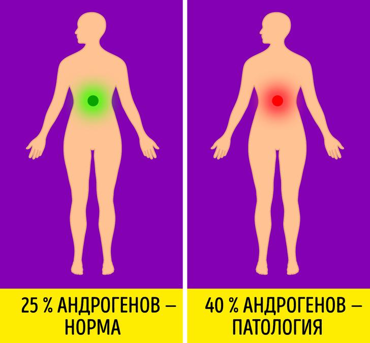 7 распространенных мифов о гормонах и как они влияют на организм на самом деле