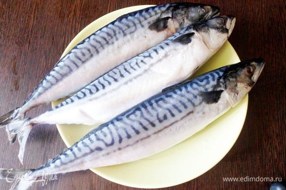 Для приготовления нужно выбрать правильную скумбрию с черной спинкой, синими узорами и светлым брюшком. Рыба должна быть без повреждений. Замороженную скумбрию разморозить, выпотрошить, удалить голову, хвостик, плавники и хорошо промыть.