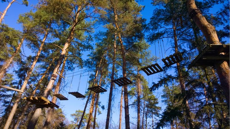 Веревочный парк и его невероятные препятствия