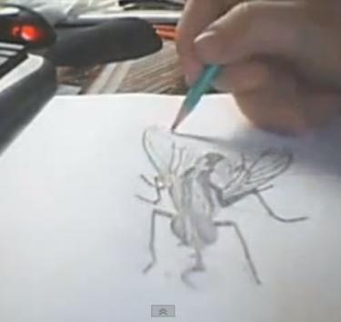3D рисунок от эскиза до готовой иллюзии