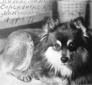 Интересные факты о Фаине Раневской