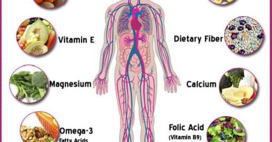 5 основных питательных веществ для вашего организма