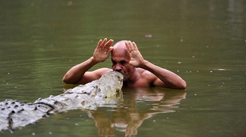 Dzhilberto Shedon i krokodil Pocho 2