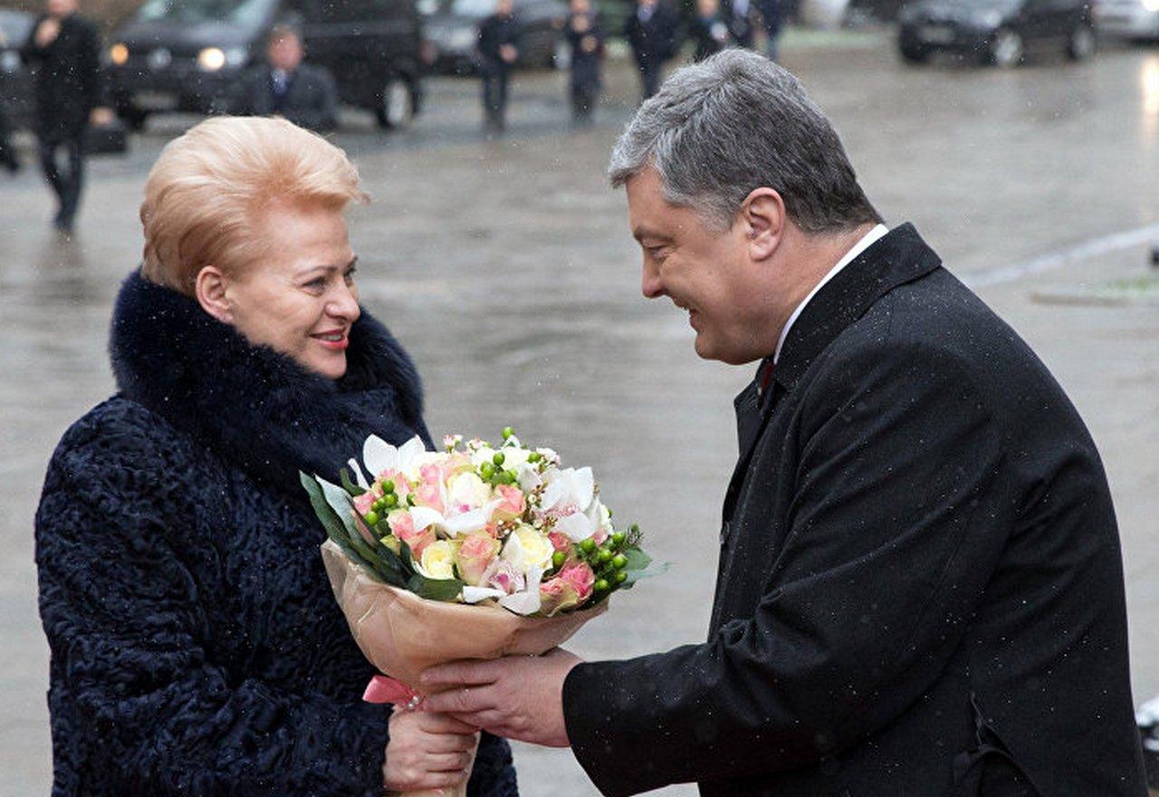 Незрячий ведёт слепого: Литва продолжает «запихивать» Украину в Евросоюз