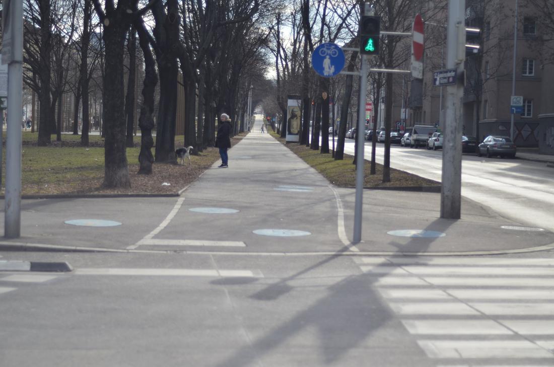 Велосипедные прогулки в Вене