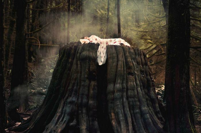 Природа и человек - главные темы в творчестве юного канадского фотографа