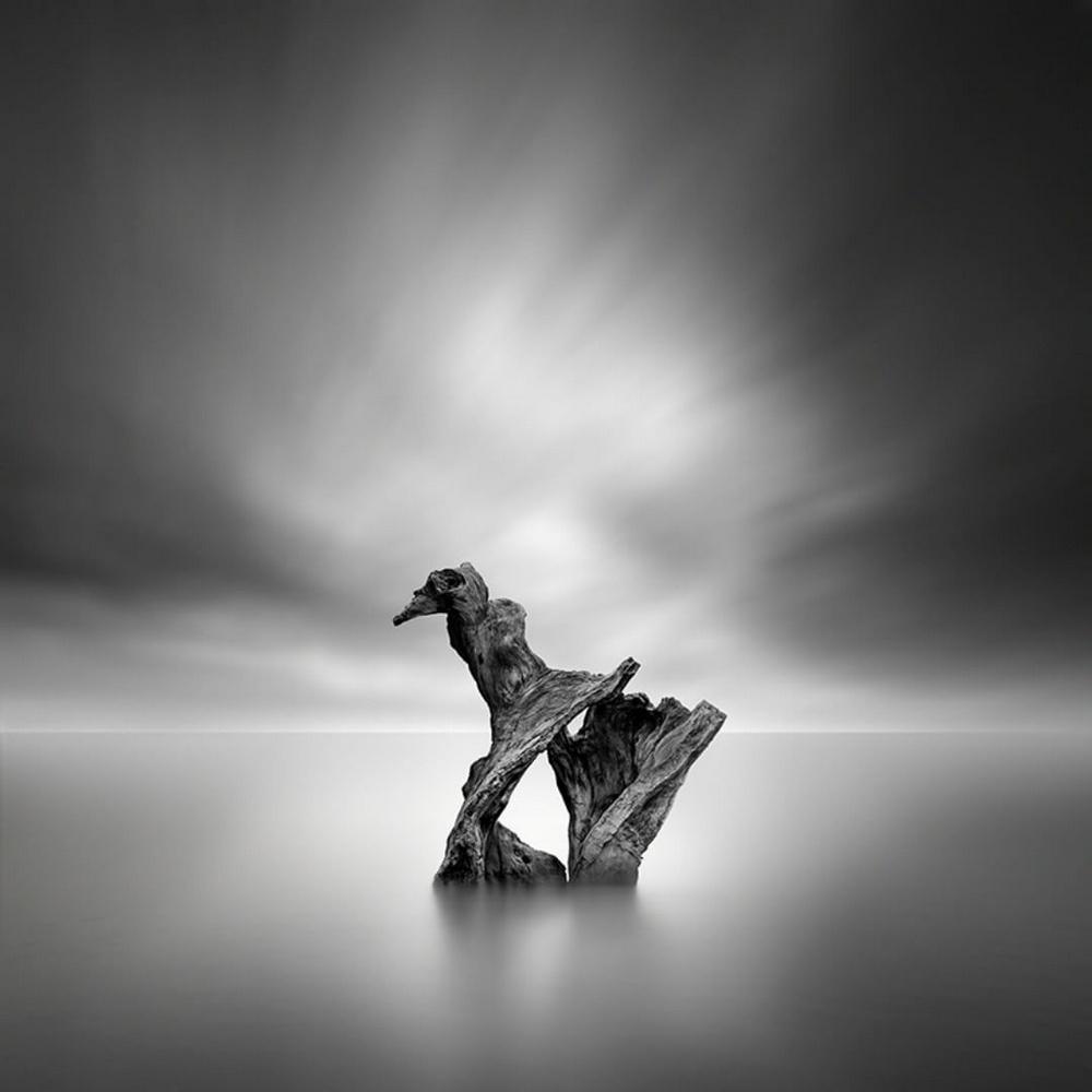 Чёрно-белые пейзажи, уходящие за пределы реальности. Фотограф Джордж Дигалакис 8