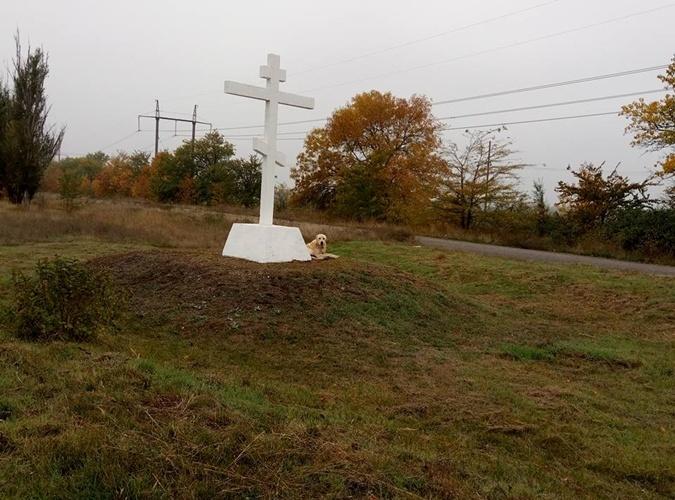 Трое суток алабай ждал хозяина возле Креста, но за ним так никто и не вернулся! И вот однажды рядом остановилась случайная машина…