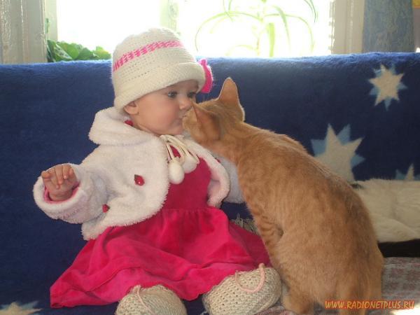 Забавные животные:)