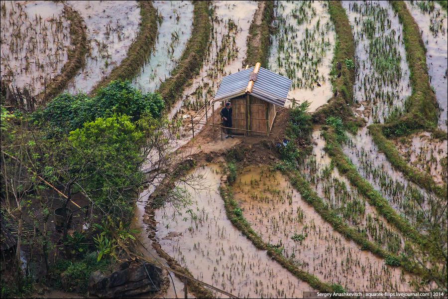 Грязь круглый год, Вьетнамская деревня