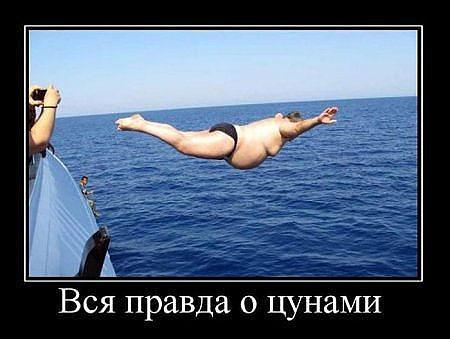 http://mtdata.ru/u8/photo9E22/20400709160-0/original.jpg#20400709160