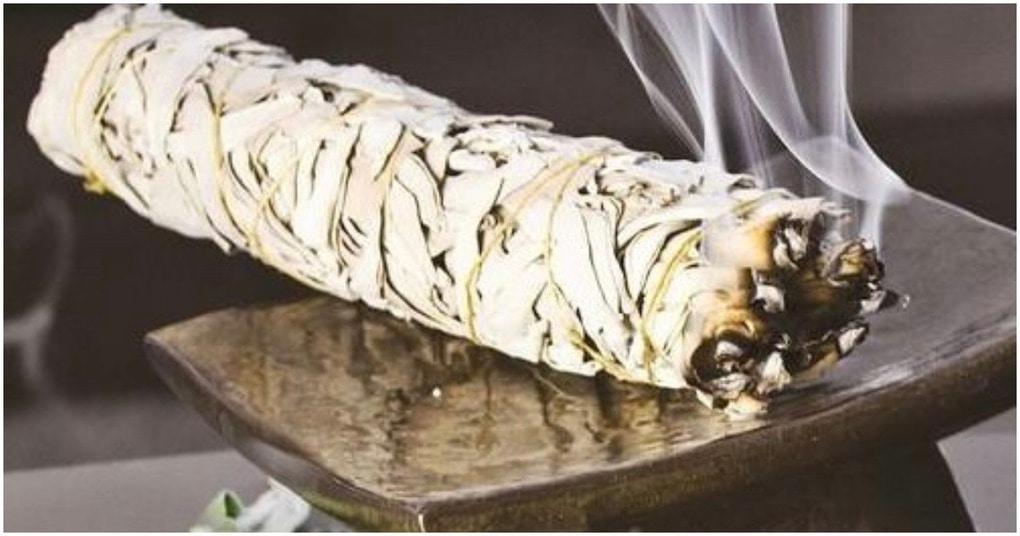 Необычные и полезные свойства дыма от шалфея