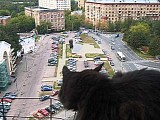 Кошка обожает балкон на 13 этаже.mpg