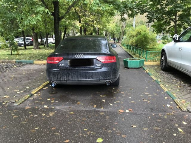 Автоледи отучили от парковки в неположенном месте