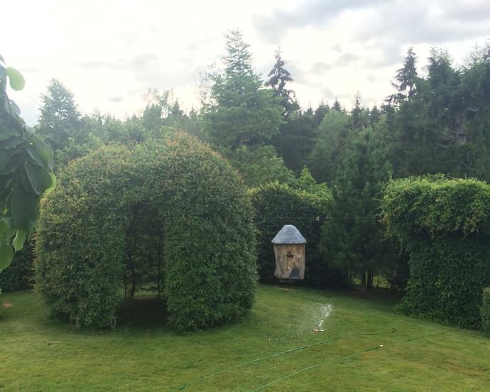 Собственный ботанический сад на девяти сотках!