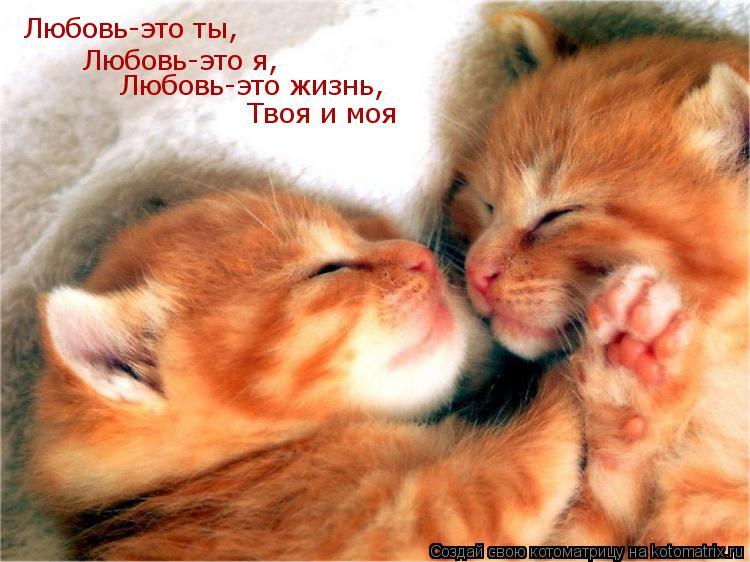 ЛЮБОВЬ - ЭТО Я!   (Сергей Георг Сретенский)