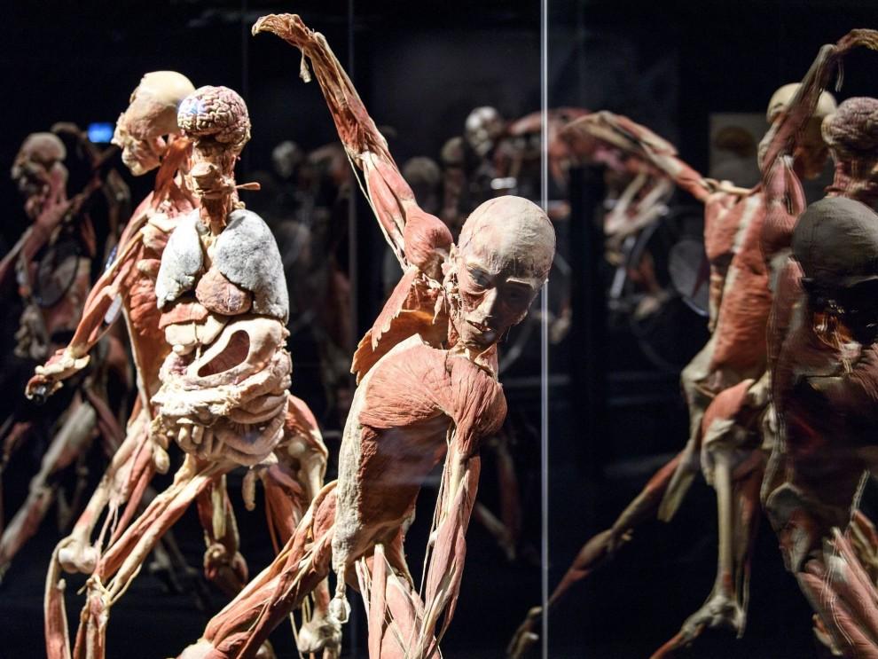 Просто мороз по коже: выставка забальзамированных человеческих тел в Женеве