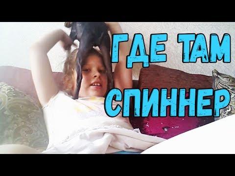 Новые приколы июнь 2017 Русские приколы с животными смешные коты собаки кошки спинер