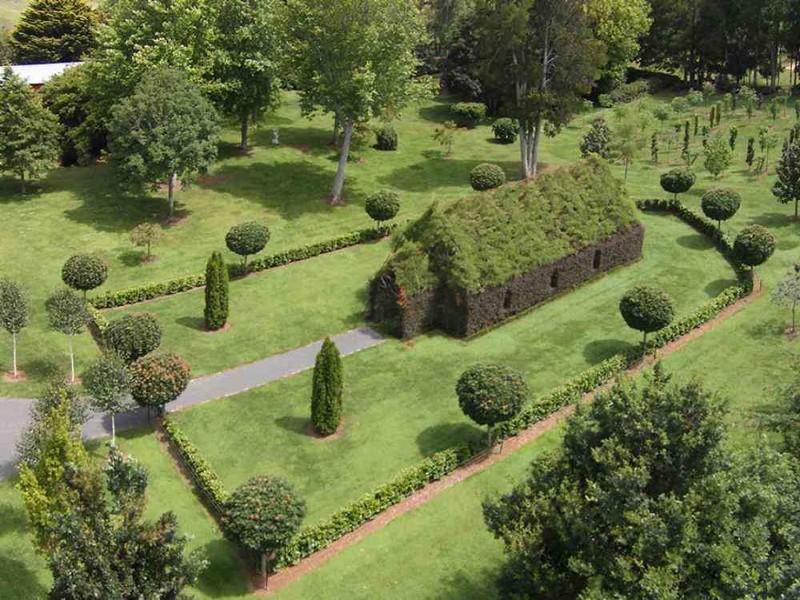 Человек создал зеленый храм из насаждений деревьев