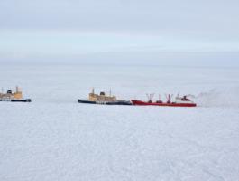 Караван из четырёх судов попал в ледяной плен у берегов Чукотки