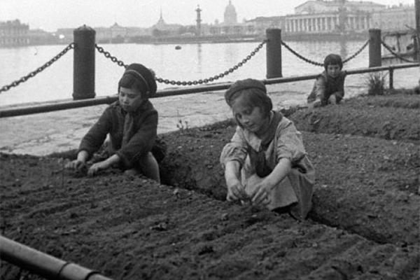 Чтобы помнили. Урожай на газонах: как блокадный Ленинград спасал свою жизнь.