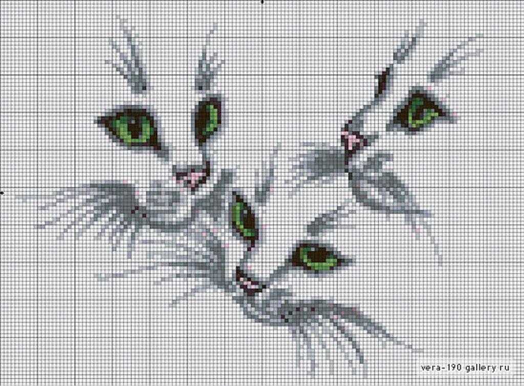 Мордочка кота вышивка