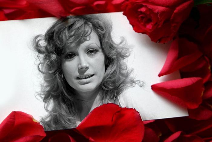 Лучшие иностранные версии на мега-популярную советскую песню «Миллион алых роз»