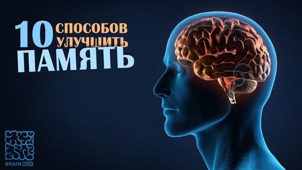 Как связано развитие мозга и совершенствование труда 190