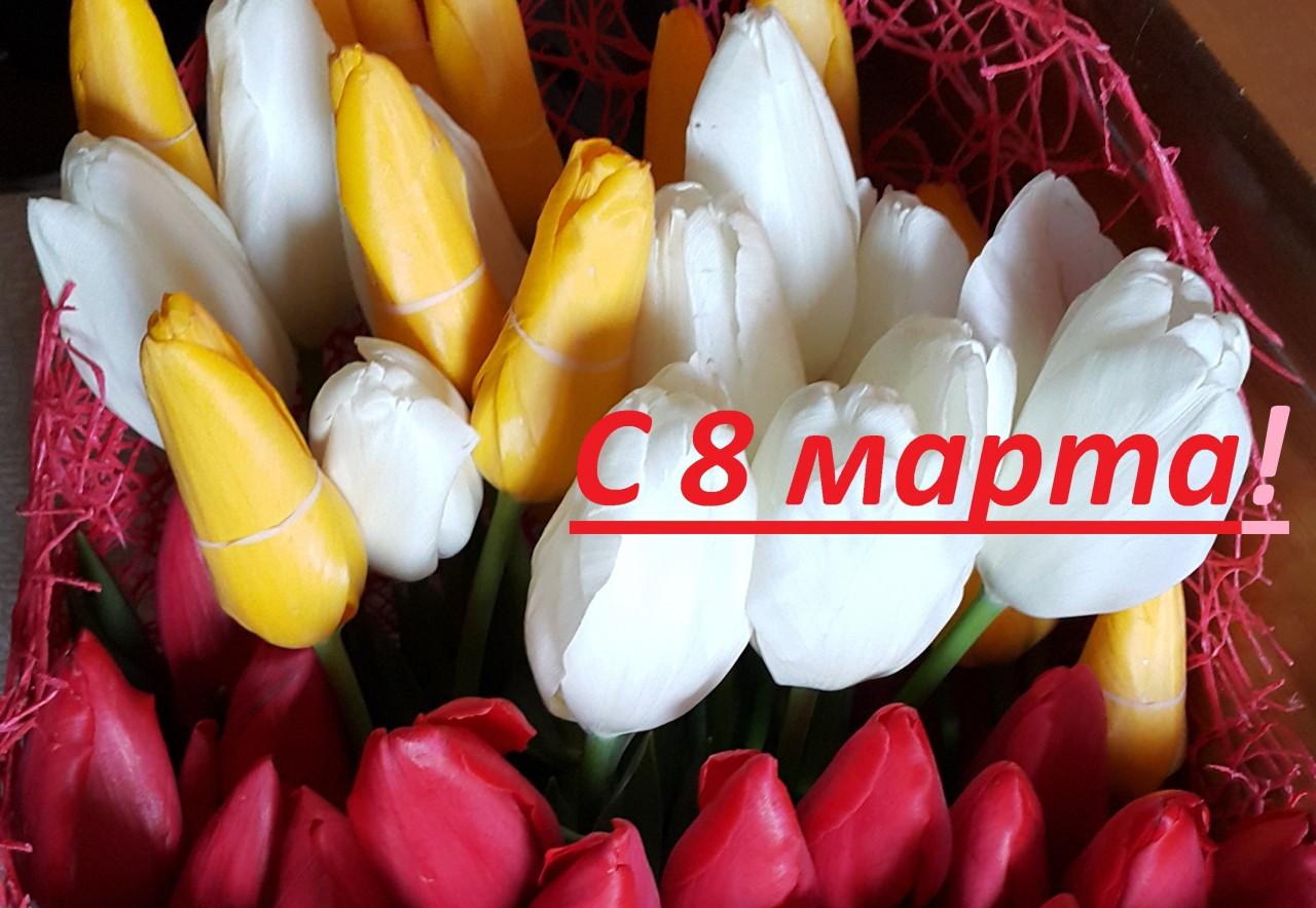 Поздравления с 8 марта: красивые в прозе, в стихах, смс