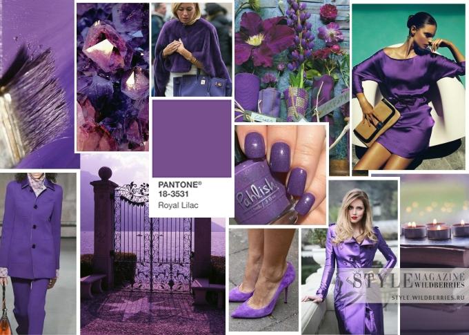 Модные цвета сезона: Королевская сирень