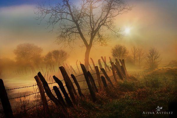 Красивые фотографии природы от Alvar Astúlez