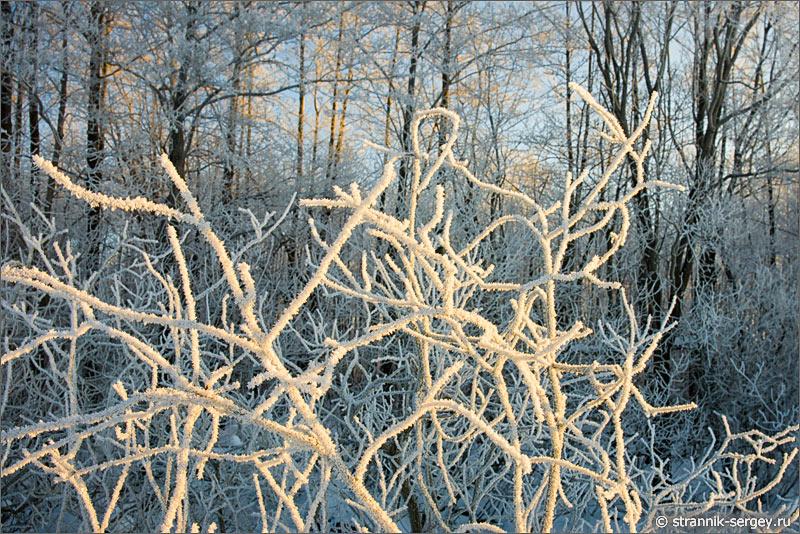 Там, где царит настоящая зима