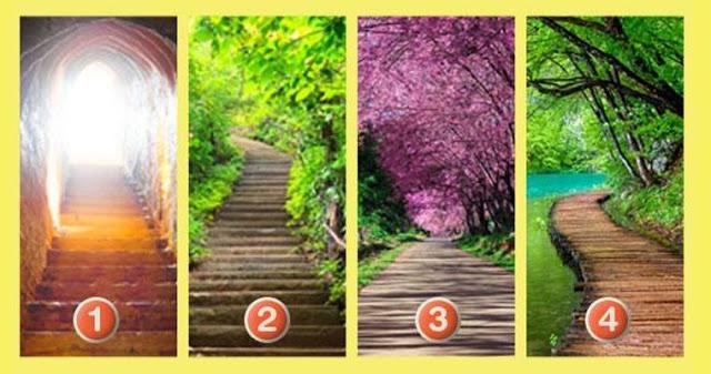 Какой путь вы выберите? Узнайте о чем говорит ваш выбор