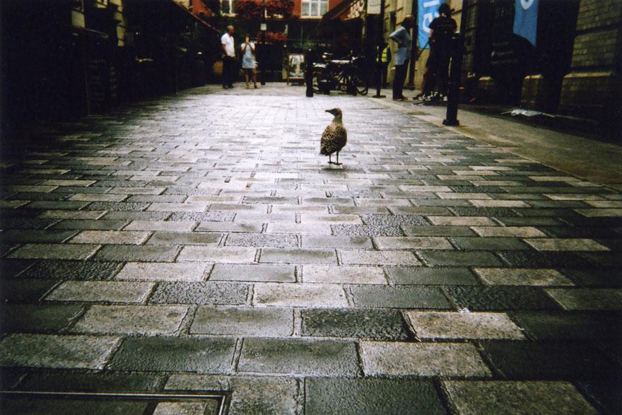 Лондон глазами бездомных