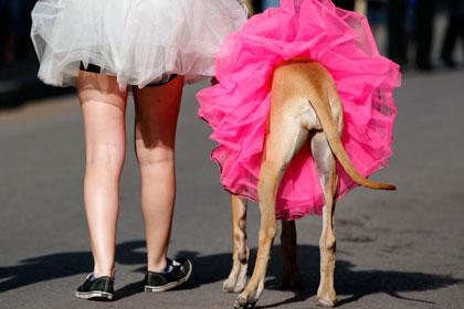 В мексиканском городе запретили мини-юбки