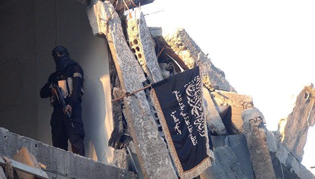 Новости Сирии. Сегодня 29 ноября 2016