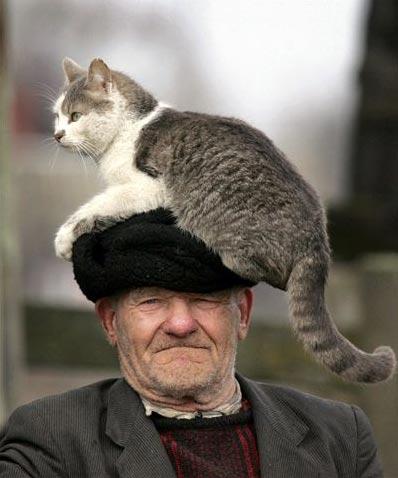 Дедушка и кот