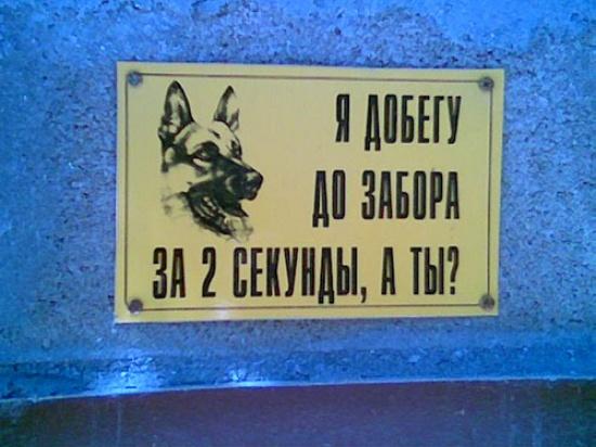 Все из жизни))
