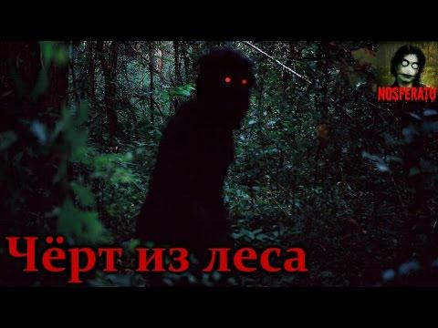 Истории на ночь: Чёрт из леса