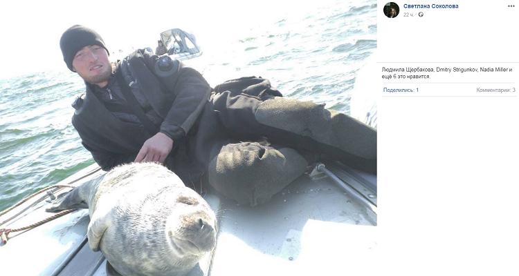 Рыбаки «приютили» тюленя на …