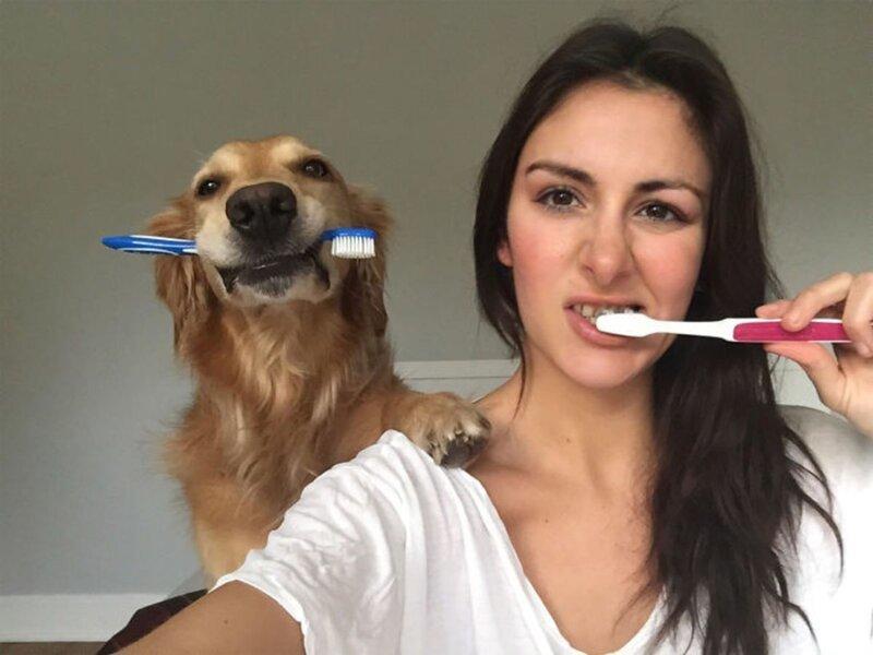 Собака, копирующая хозяйку, стала звездой интернета