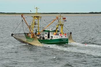 В правительстве РФ признали «избыточную нагрузку» на рыбаков