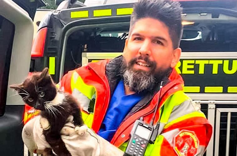 Полиция час ловила котёнка на автомагистрали