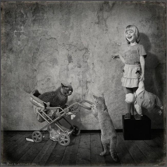 Девочка и кошки