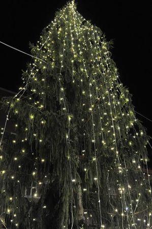 """""""Какая жизнь, такая и елка..."""" Рождественская елка в Риме оказалась полным провалом"""